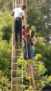 Photos: Electricity Worker Electrocuted Today In Kano