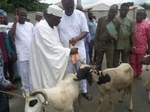 Again, Fayose Distributes Rams To Muslim Leaders In Ekiti [PHOTOS]