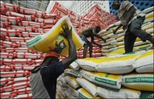 Economy Recession: One Bag Of Rice May Sell For N40,000 In December – Minister