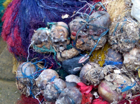 Troops Discover 25 Human Skulls In Militants' Shrine In Cross River [PICTURED]
