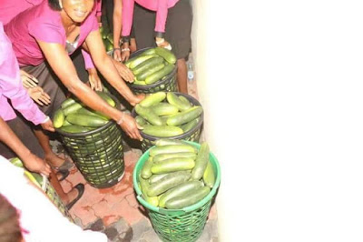 Huh? Pastor Shares 'Anointed' Cucumbers To Members During Service [PHOTOS]