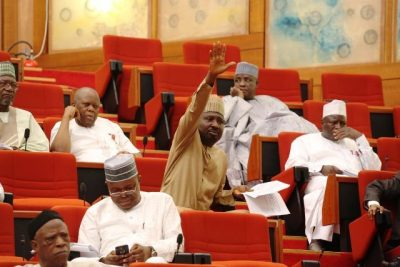 Senate Condemns Nigerian Military Intervention In The Gambia Political Affairs