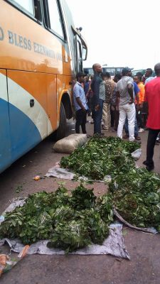 Driver Shot Dead In Robbery Attack On Lagos-Benin Expressway