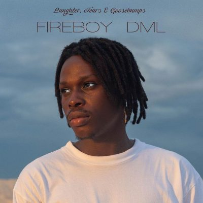 Download Fireboy DML Wait and See mp3 download