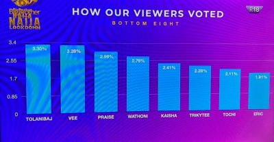 BBNaija: See How Nigerians Voted For Their Favourite Housemate